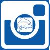instagram_ploutvicka